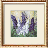 Larkspur in Blues Prints by Katharina Schottler