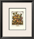 Twelve Months of Fruits, 1732, July Posters by Robert Furber