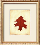 Oak Leaf Prints by Meg Page