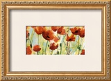 Poppies Field Prints by Heidi Reil