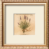 Lavender Prints by Carolyn Shores-Wright