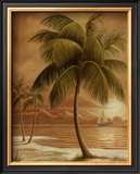 Island Palm I Art by Ron Jenkins