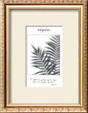 Aspire Prints by Deborah Van Swearingen