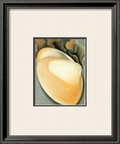 Tan Clam Shell Prints by Georgia O'Keeffe