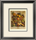 Fruits of the Season, Winter Posters by Robert Furber
