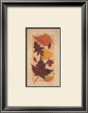 Autumn Harvest I Prints by Deni Michelle Newey