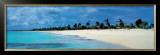 Barbuda Prints by James Red