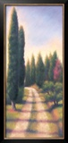 Tuscan Road I Prints by David Wander