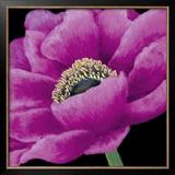 Brilliant Blooms I Art by Linda Wood