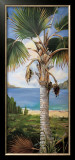 Fan Palm Art by Deborah Thompson
