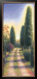 Tuscan Road II Posters by David Wander