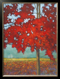 Maple Tree Art at AllPosters.