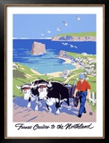 Furness North Land Cruises Framed Giclee Print by Adolph Treidler