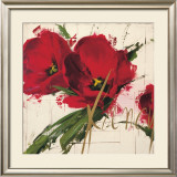 Fancy Tulips Prints by Antonio Massa