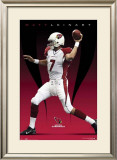 Arizona Cardinals - Matt Leinart Photo