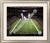 Superdome Framed Photographic Print