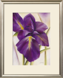 Purple Blossom I Poster by Caroline Wenig