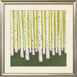 Birch Forest Posters by Lisa Congdon
