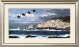 Shore Birds at Point Lobos Prints by William S. Phillips