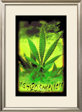 It's 4:20 Somewhere Posters