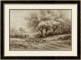 Herding Sheep Prints by Carl Weber