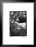 Springtime Garden IV Prints by Laura Denardo