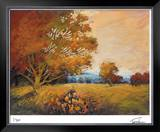 Sunset Path Limited Edition Framed Print by Michael Tienhaara