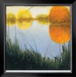 Autumn Marsh II Limited Edition Framed Print by Mark St. John