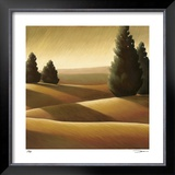 Golden Fields II Limited Edition Framed Print by Deac Mong