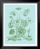 Spring Cyclamen I Prints