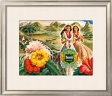 Hawaii USA Framed Giclee Print by  Andre