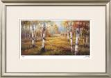 Forest Meadow Limited Edition Framed Print by Stephen Douglas