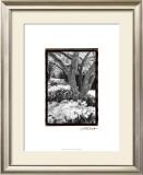 Springtime Garden VI Prints by Laura Denardo