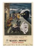Advertising for Whisky Lámina giclée