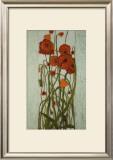 Poppy Garden Posters by Karen Tusinski