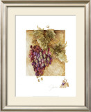 Grapes II Print by Elizabeth Jardine