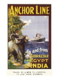 Anchor Line Poster for Ship Travel Between Gibraltar, Egypt and India with an Elephant Giclee Print