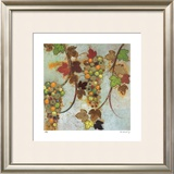 Vineyard Visions I Limited Edition Framed Print by Aleah Koury