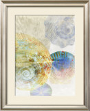 Shell Suite III Prints by Robert Mertens