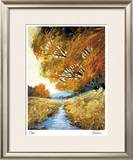 Summer's Edge Limited Edition Framed Print by Michael Tienhaara