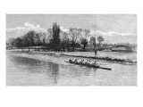 Cambridge Eight Rowing on the River Cam, 1890 Giclee Print