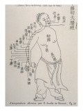 Acupuncture the Meridian of the Large Intestine Giclee Print
