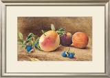 Study Of Fruit, 1877 Prints by John William Hill