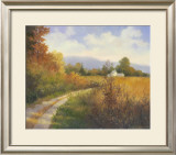 Autumn Country Road Poster by Mary Jean Weber
