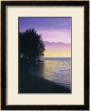 Idyllic Lake IV Prints by Gerd Weissing