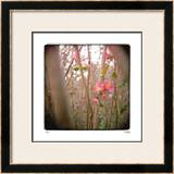Quince Forest Limited Edition Framed Print by Rebecca Tolk