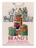 Brand's Invalid Preparations Advertisement Giclee Print