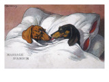 Dachshunds in Bed a Marriage of Love Giclee Print