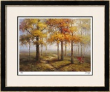 Sunlit Steps Limited Edition Framed Print by Stephen Douglas