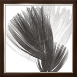 Plumes Ii, 2008 Prints by Anne Montiel